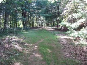 Lathrop East Path