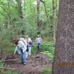 Finding animal tracks