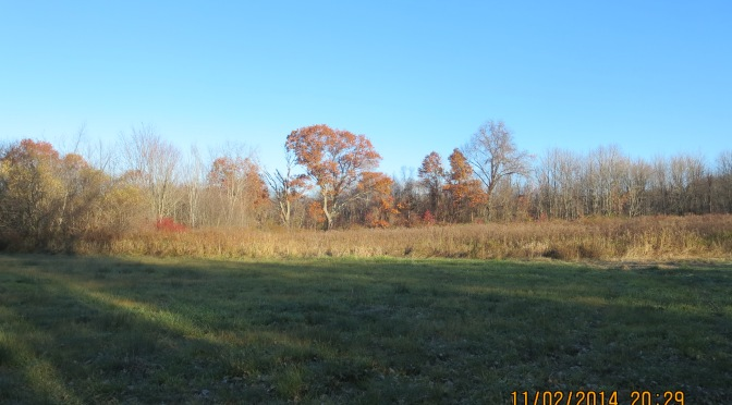 Walk to Lathrop's Old Oak Tree