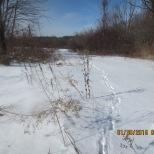 a Lathrop field
