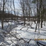 snow 1 30 15 032