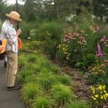 Admiring the native plant garden near the Inn